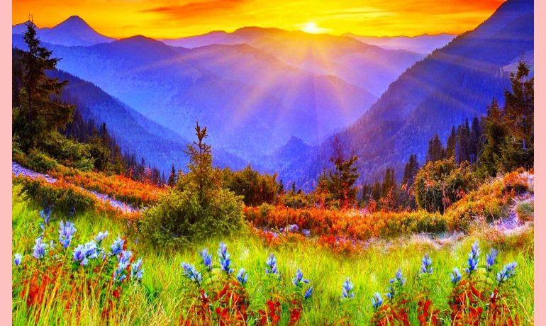 A resposta iluminada de Bodhidharma