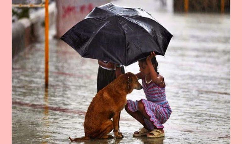 O amor ilimitado