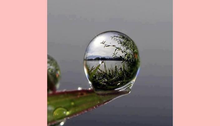 Como bolhas