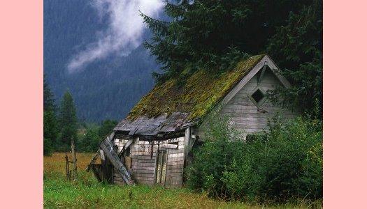 Canção da Cabana coberta de relva