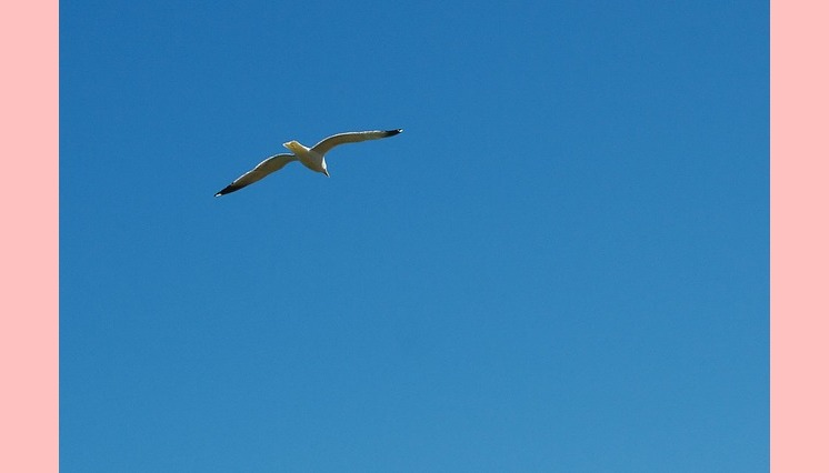 A iluminação é ver o puro céu azul