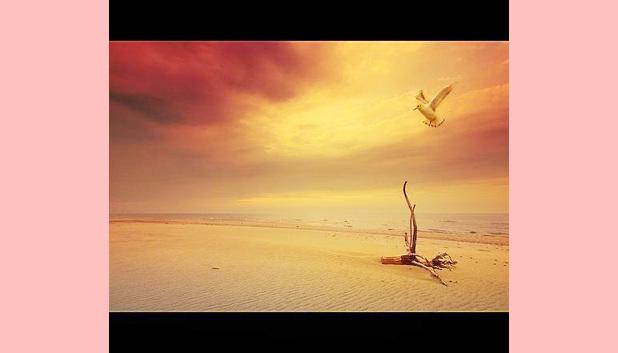 Deuses e Vazio | Monge Genshô