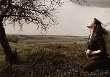 A Origem do Sofrimento | Monge Genshô