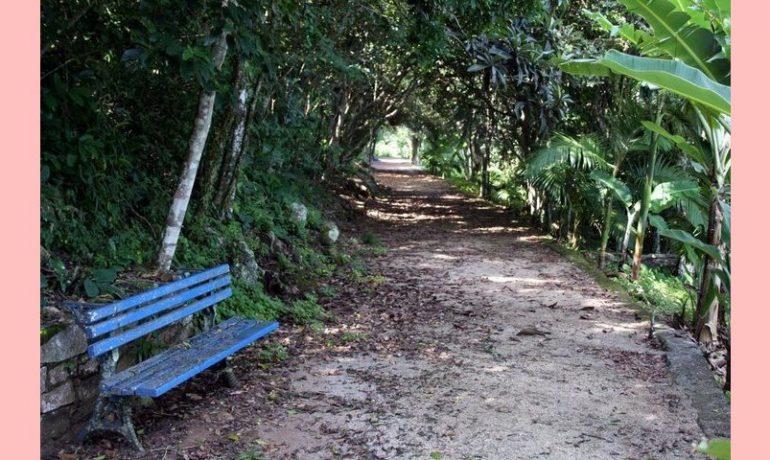 Trocar de trilhas pode prejudicar o caminho?