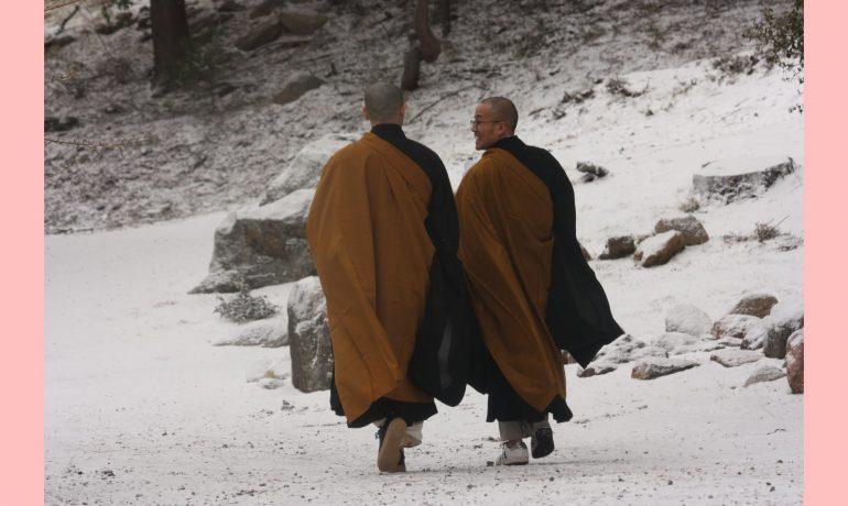 Transmissão do Dharma