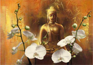 Samadhi | Monge Genshô