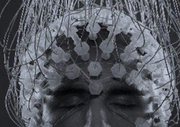A Investigação Meditativa | Monge Genshô