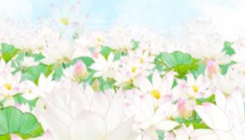 Hanamatsuri | Monge Genshô